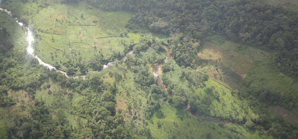 Nicaragua Forest Aerial Photograph
